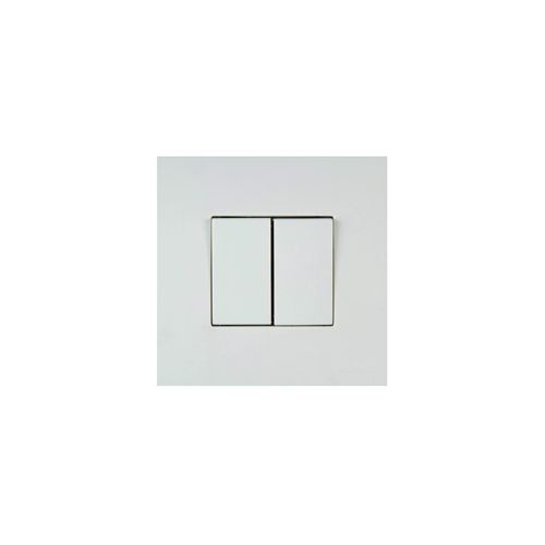 Double interrupteur Blanc NF