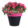 Pot de fleur Style bicolore Fuschia/Anthracite