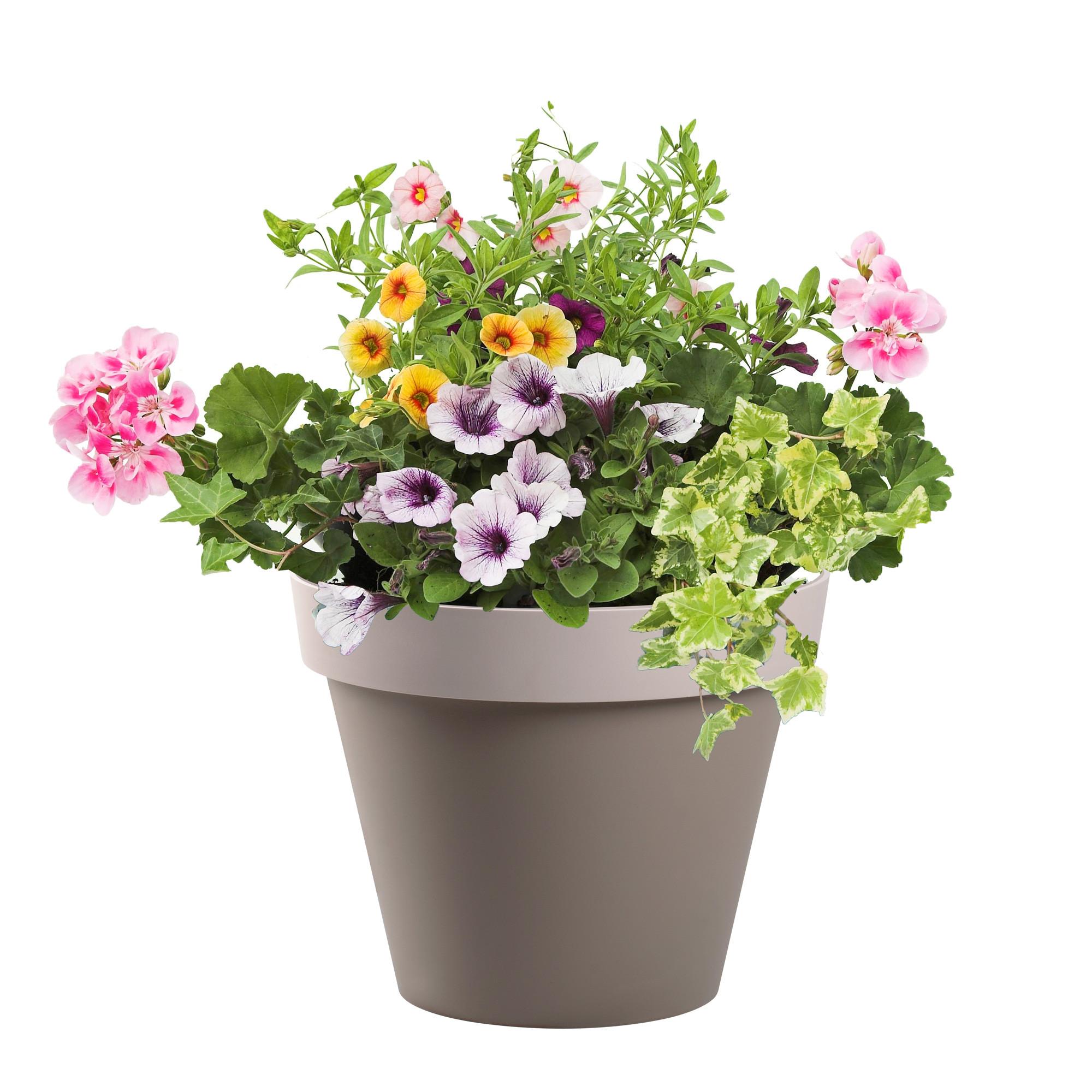 Pot De Fleur My Blog