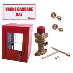 Lyre INOX (sans date limite de remplacement) NF GAZ - 70 cm