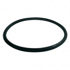 Joint torique pour filtre fioul bitube RG 2 et RG Z - Watts 22L0199013