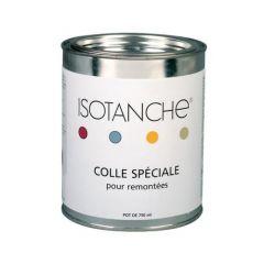 Colle spéciale pour remontées ISOTANCHE Pot de 750ml