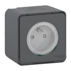 Mureva Styl - Prise courant 2P+T - saillie - IP55 - IK08 - à vis - gris