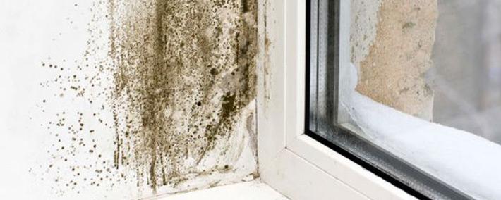Blog comment lutter contre l humidit anjou connectique - Lutter contre l humidite ...